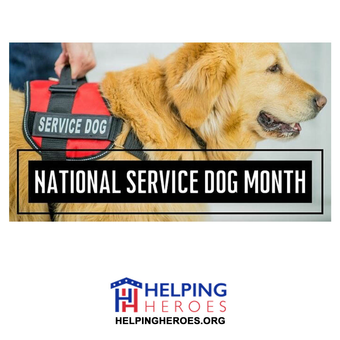 You are currently viewing National Service Dog Month